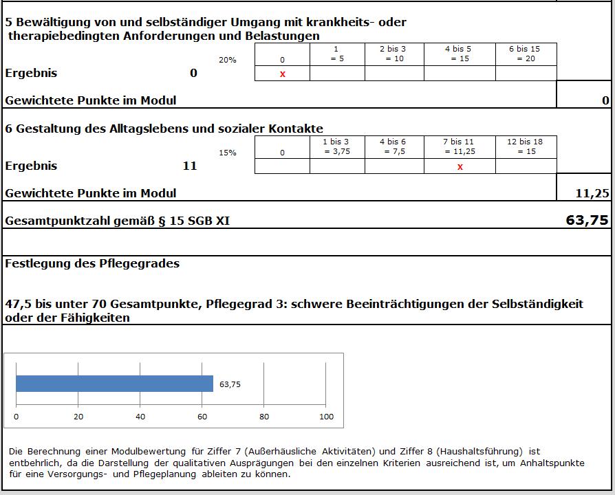 Excel-Pflegegradrechner - für Erwachsene und Kinder - GKV-Software ...